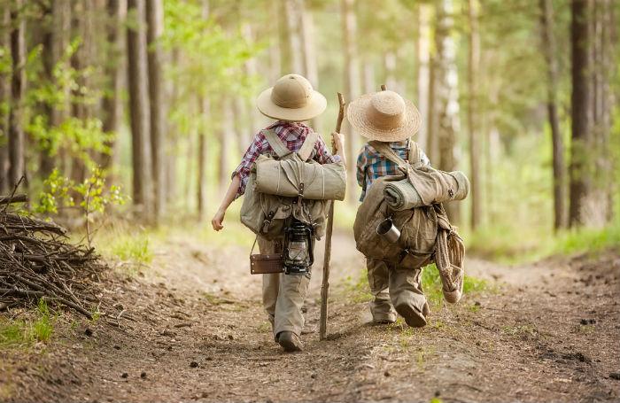 Як не загубитися в лісі? Корисні поради